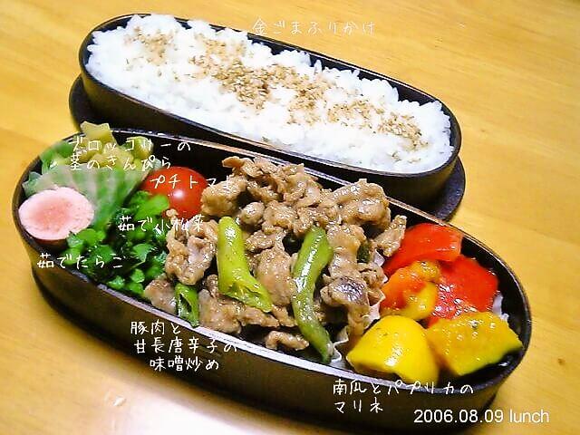 豚肉と甘長唐辛子の味噌炒め弁当